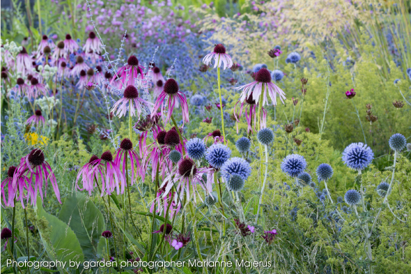 Image by Marianne Majerus for Jacqueline Poll garden design