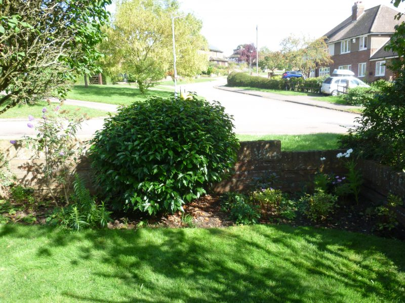 Wheathampstead (before photo)