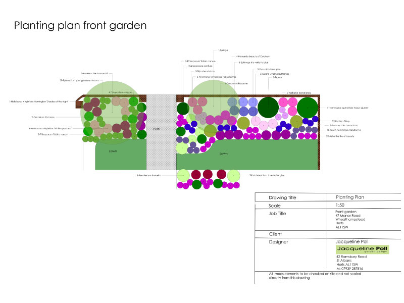Planting Plan Front Garden- Jacqueline Poll